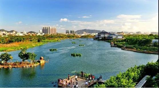 五缘湾湿地公园.jpg